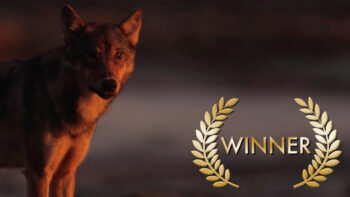 "Permalink to: Best Documentary Short – ""Call Of The Coastal Wolves"" (Canada)"
